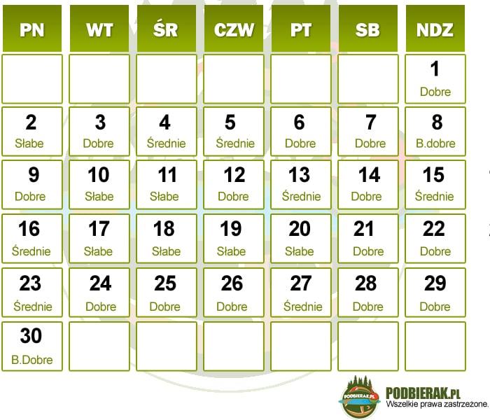 Kalendarz brań czerwiec 2014