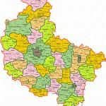 Logo grupy Wielkopolskie